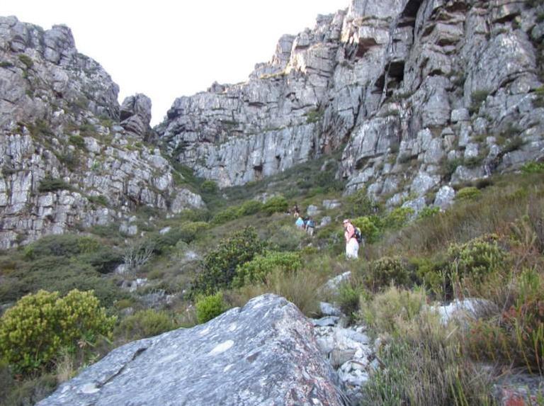 cape-town-hikes-diagnol-09