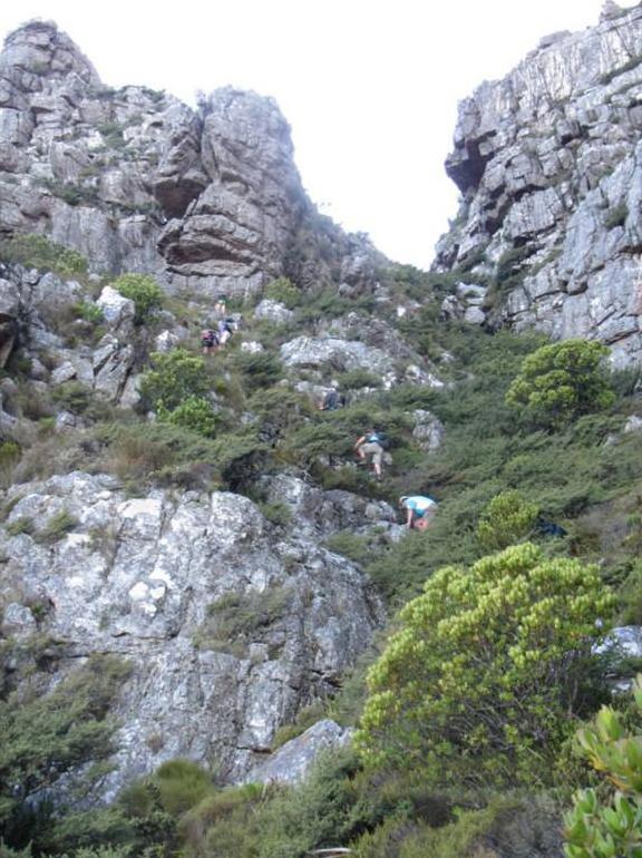 cape-town-hikes-diagnol-10