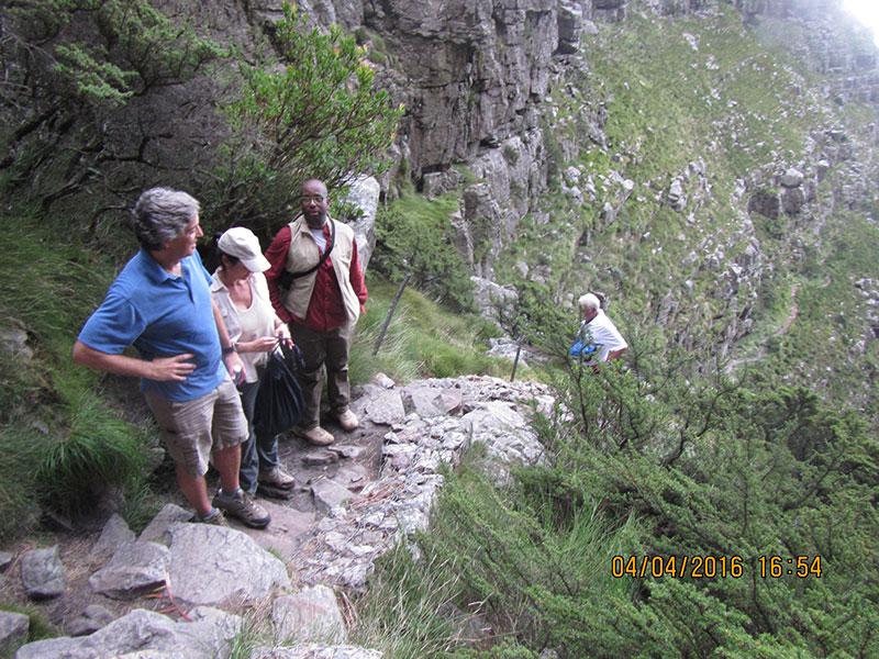 cape-town-hikes-platteklip-gorge-15