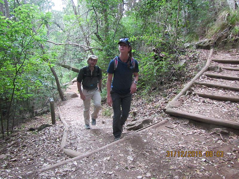 cape-town-hikes-skeleton-gorge-03