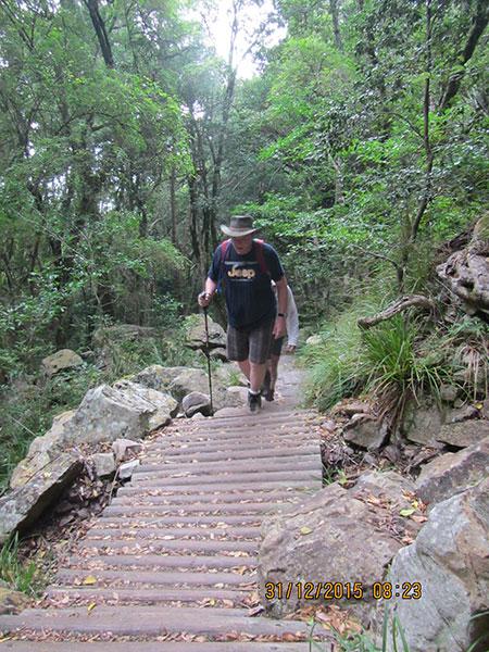 cape-town-hikes-skeleton-gorge-04