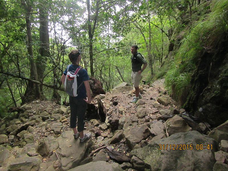 cape-town-hikes-skeleton-gorge-05