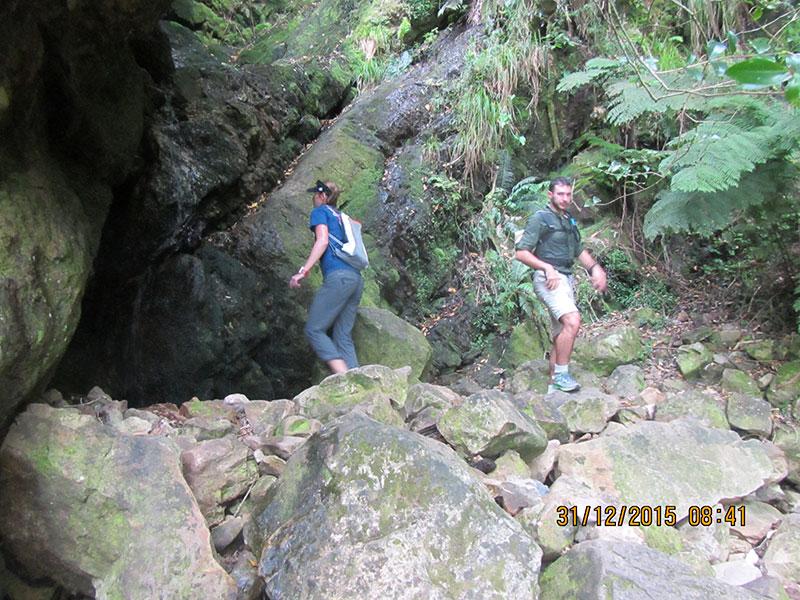 cape-town-hikes-skeleton-gorge-06