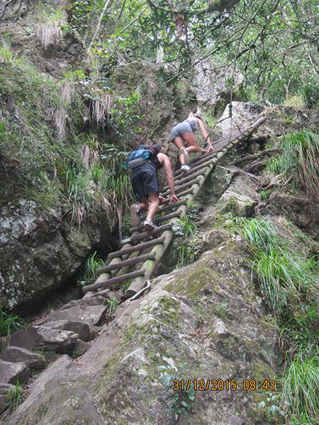 cape-town-hikes-skeleton-gorge-07