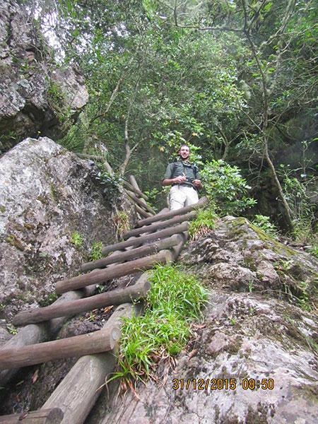 cape-town-hikes-skeleton-gorge-09