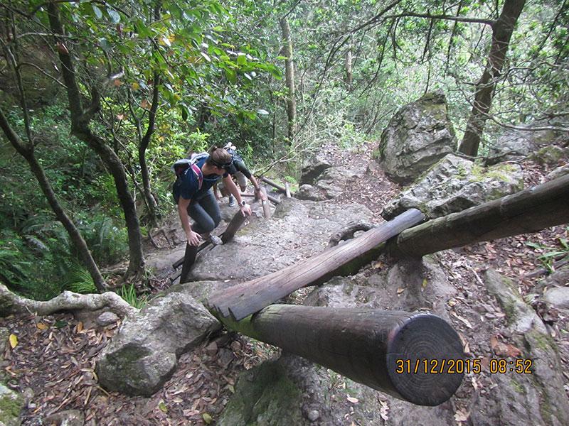 cape-town-hikes-skeleton-gorge-10