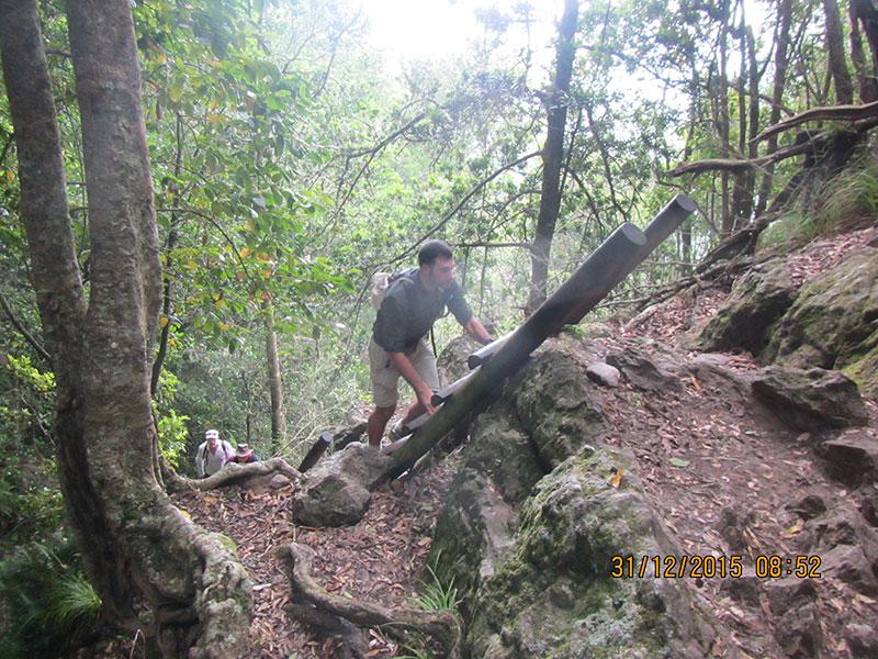 cape-town-hikes-skeleton-gorge-11