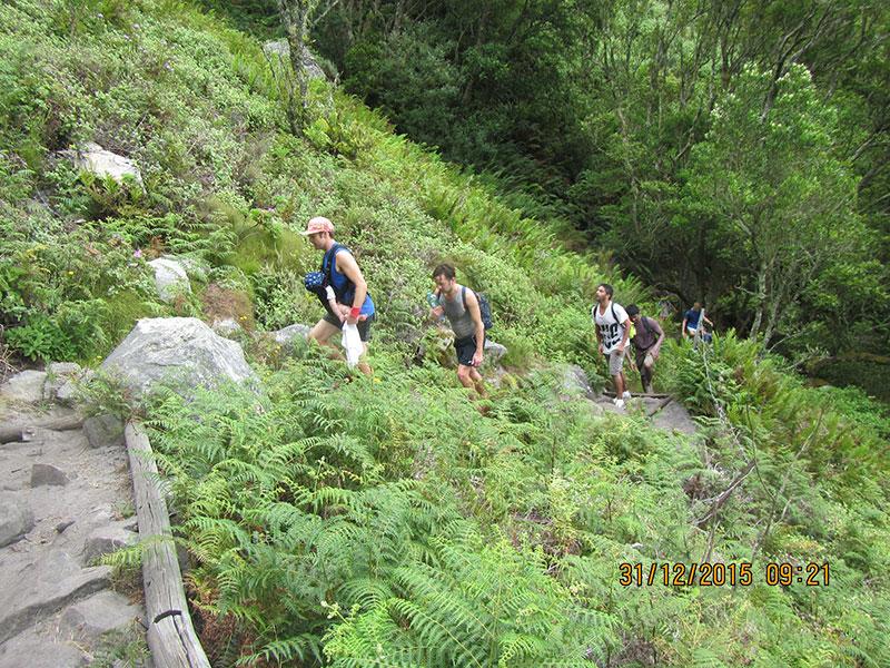 cape-town-hikes-skeleton-gorge-12