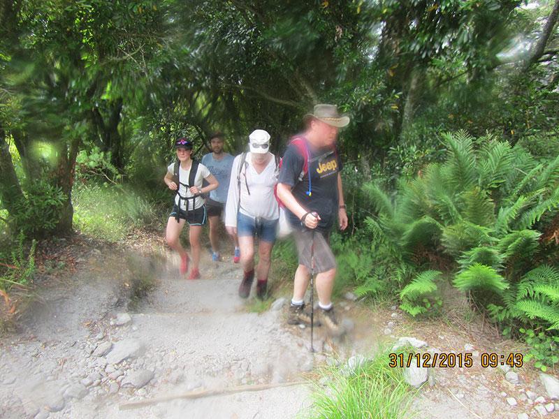 cape-town-hikes-skeleton-gorge-13